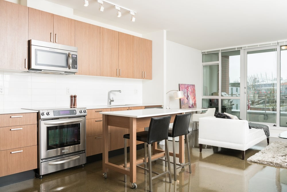 306 221 Union Street - Mount Pleasant VE Apartment/Condo for sale, 1 Bedroom (R2043525) #4